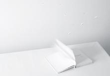 003_more_lifebooks
