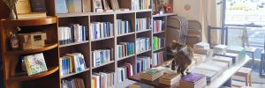 December20_Bookshop_01